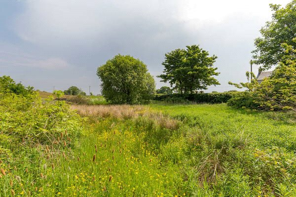 Land Commercial for sale in Hallhill - Lot 2, By Glassford, Strathaven, South Lanarkshire, ML10