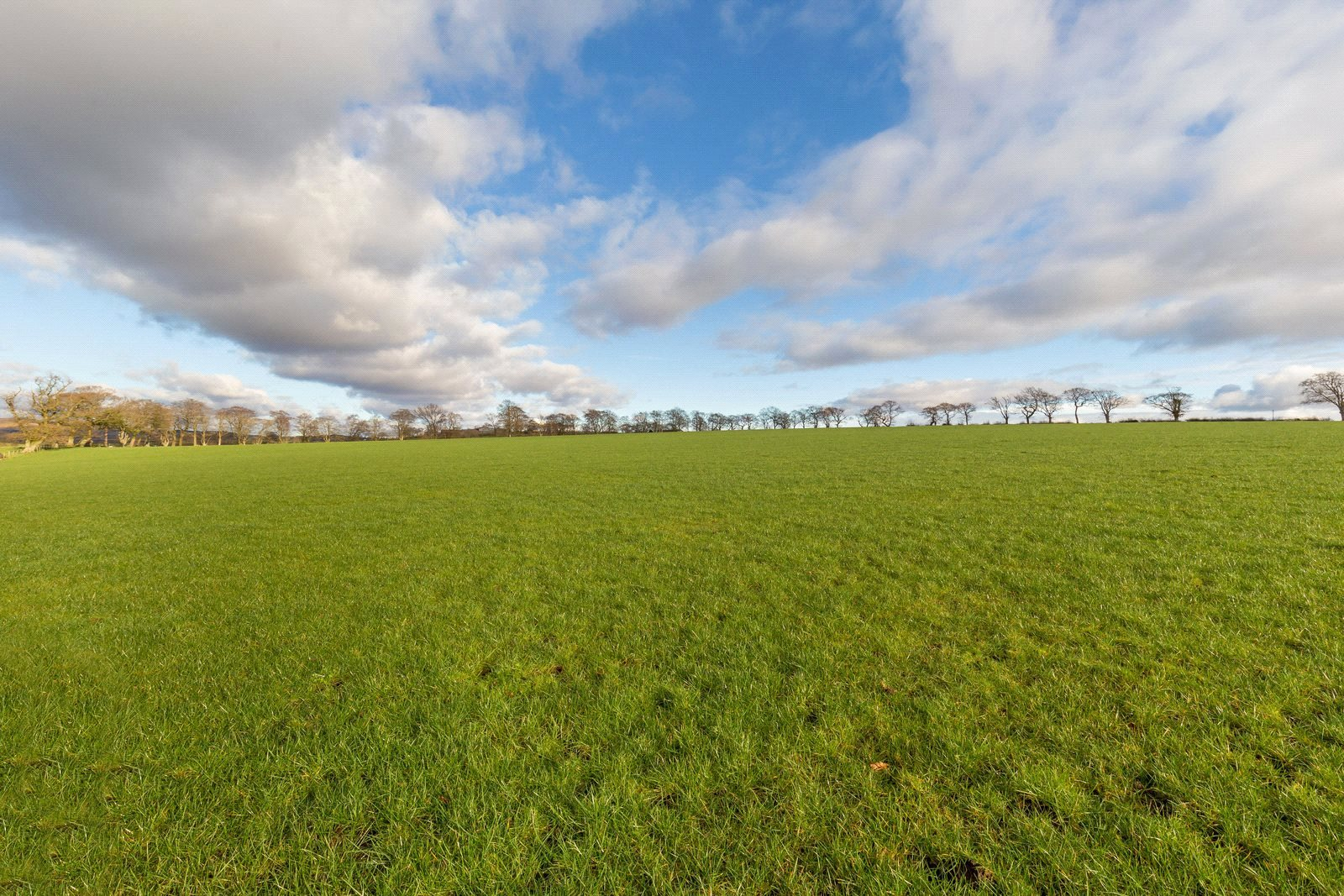 Land Commercial for sale in Drumfork Farm - Lot 2, By Auchinleck, East Ayrshire, KA18