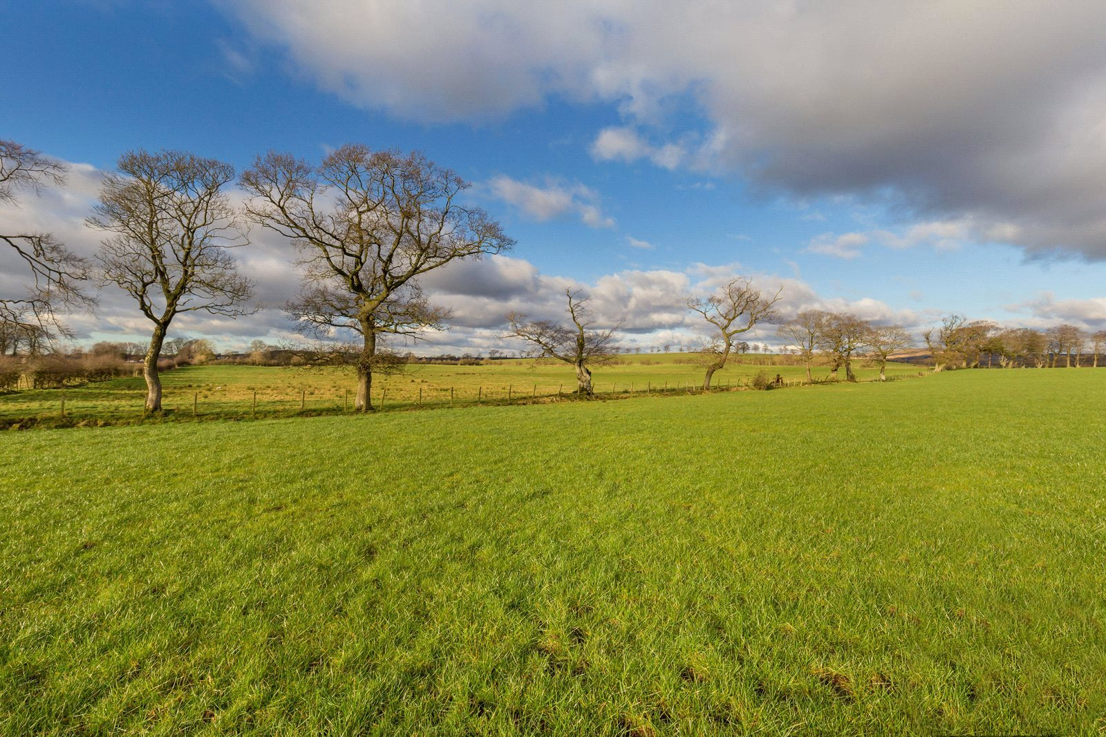 Land Commercial for sale in Drumfork Farm - Lot 3, By Auchinleck, East Ayrshire, KA18