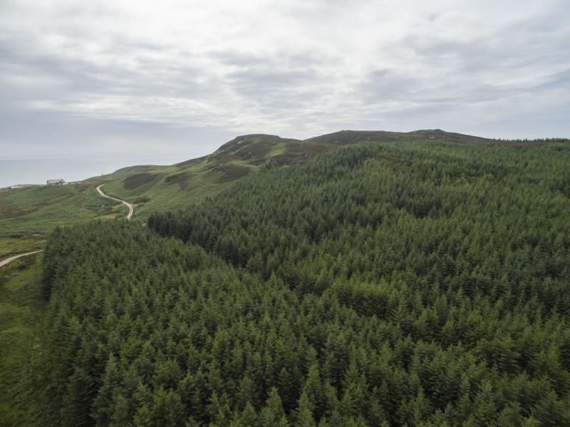 Land Commercial for sale in Cornabus Forest, The Oa, Isle Of Islay, Argyll, PA42