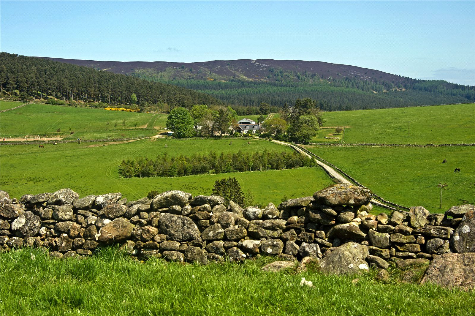 Additional photo for property listing at Whitehills Farm, Monymusk, Inverurie, Aberdeenshire, AB51 Aberdeenshire, Scotland