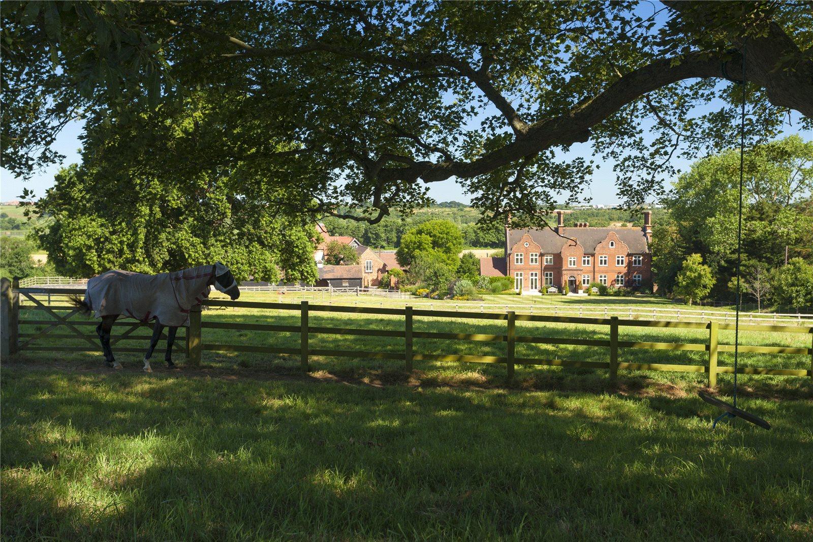Tek Ailelik Ev için Satış at Stodmarsh, Canterbury, Kent, CT3 Canterbury, Ingiltere