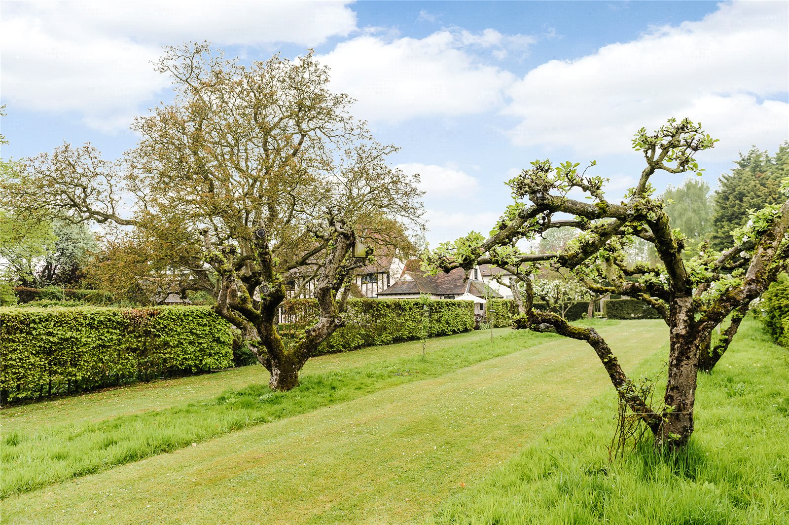 Additional photo for property listing at Onslow Green, Dunmow, Essex, CM6 Dunmow, Inglaterra