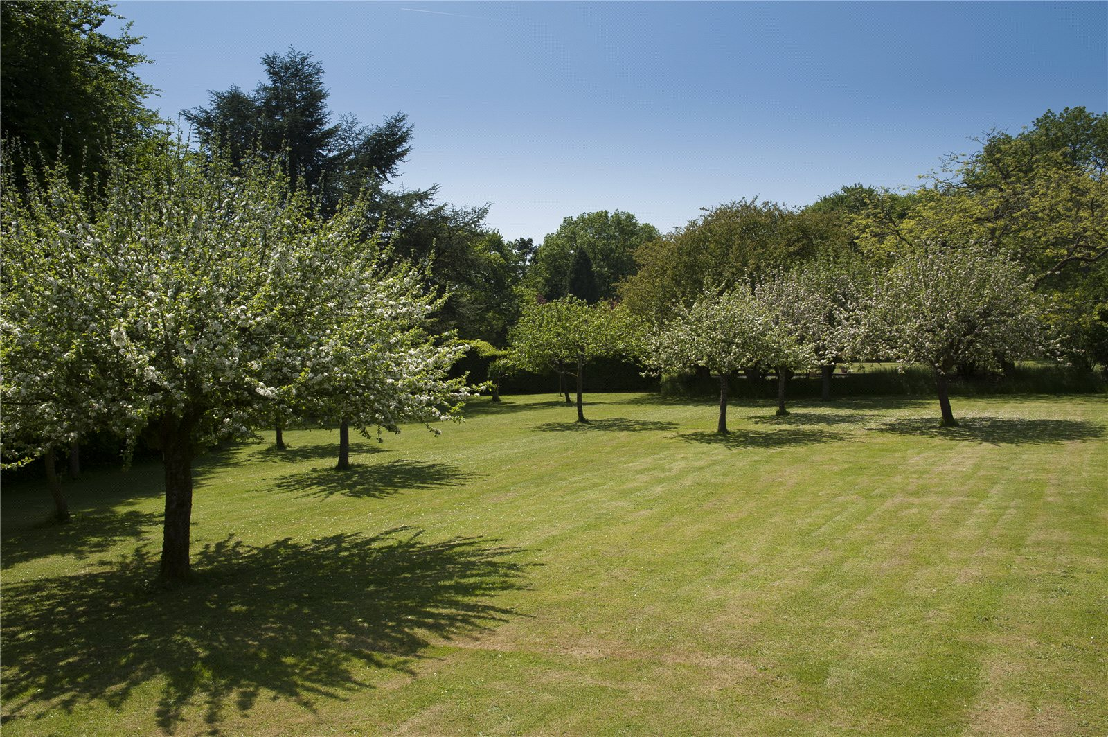 Additional photo for property listing at Warrens Gorse, Daglingworth, Cirencester, Gloucestershire, GL7 Cirencester, Αγγλια