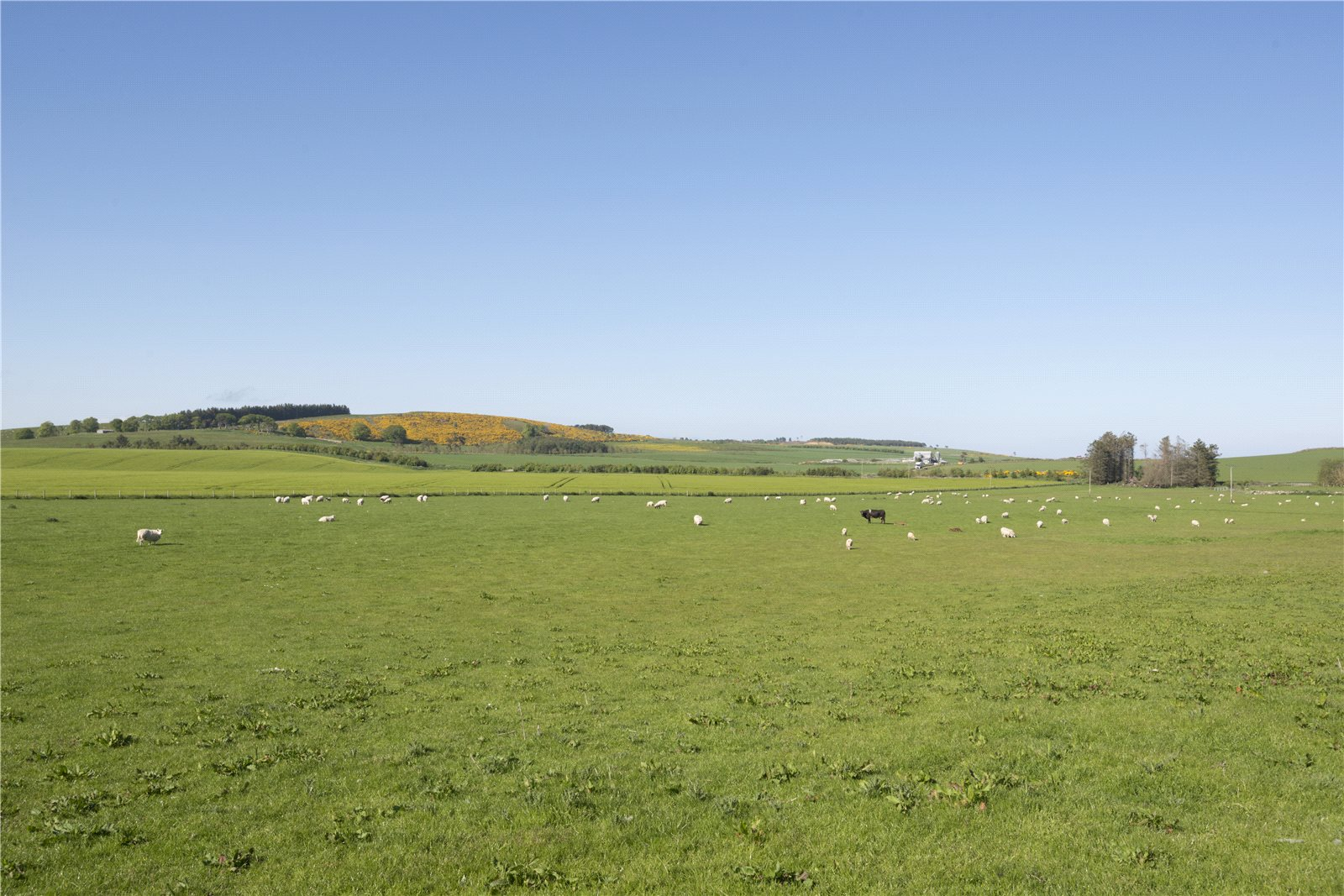 Additional photo for property listing at Castlecraig Farm, Nigg, Tain, Ross-Shire, IV19 Schottland