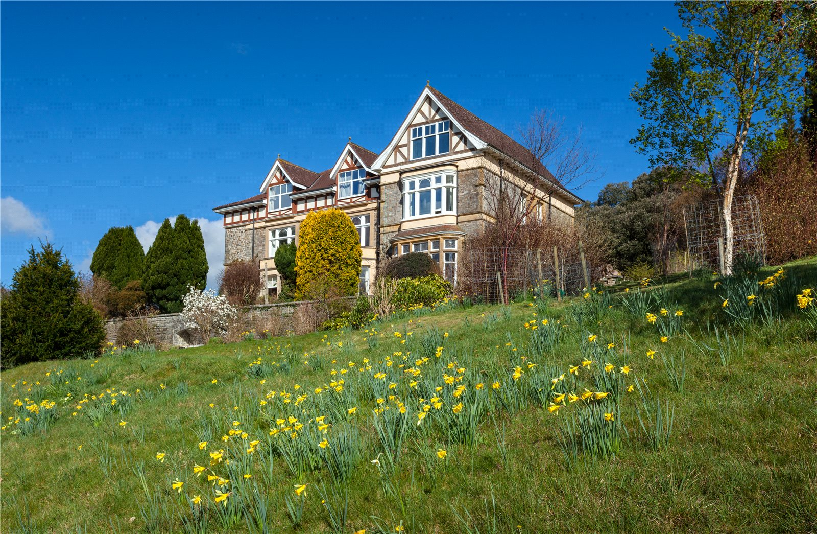 Additional photo for property listing at Wonham, Bampton, Tiverton, Devon, EX16 Tiverton, 英格兰