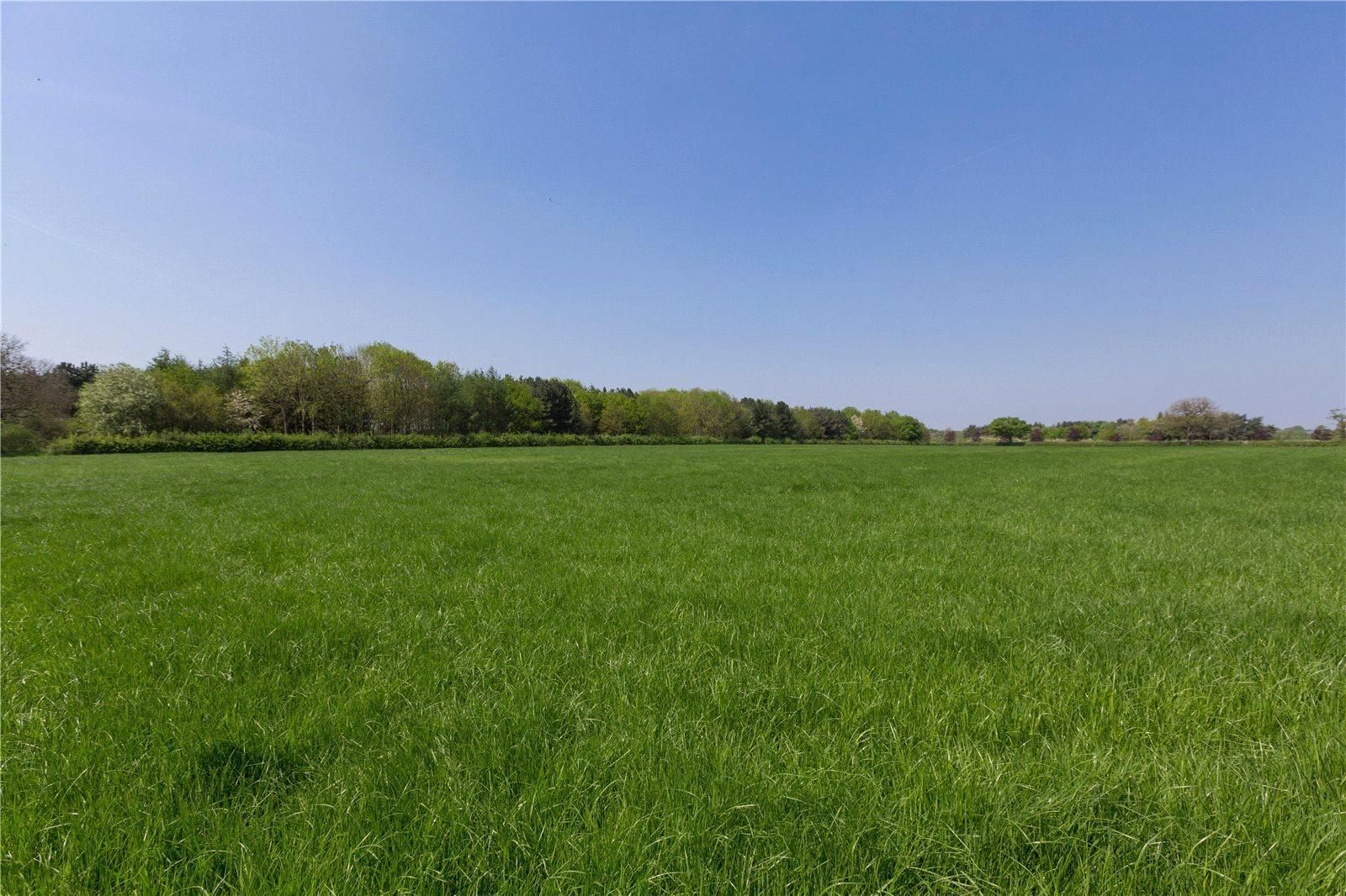 Terre / Lot de terrain pour l Vente à Forge Mill Lane, Warmingham, Middlewich, Cheshire, CW10 Middlewich, Angleterre