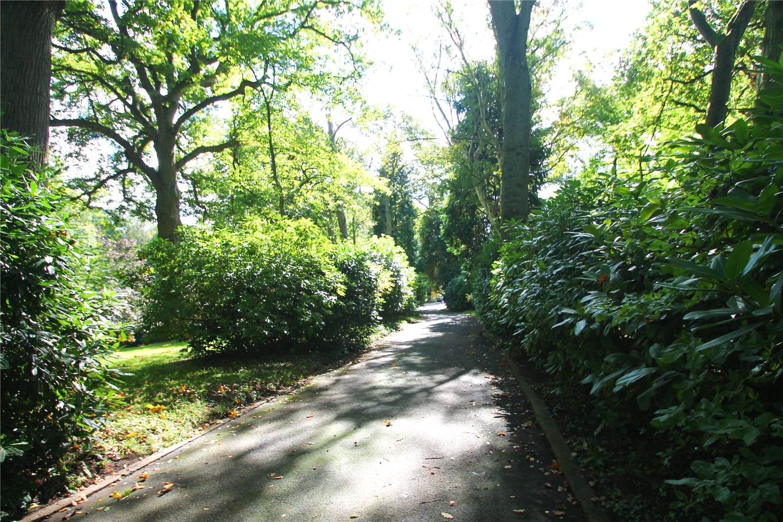 Additional photo for property listing at Clay Hill, Beenham, Reading, RG7 Reading, Αγγλια