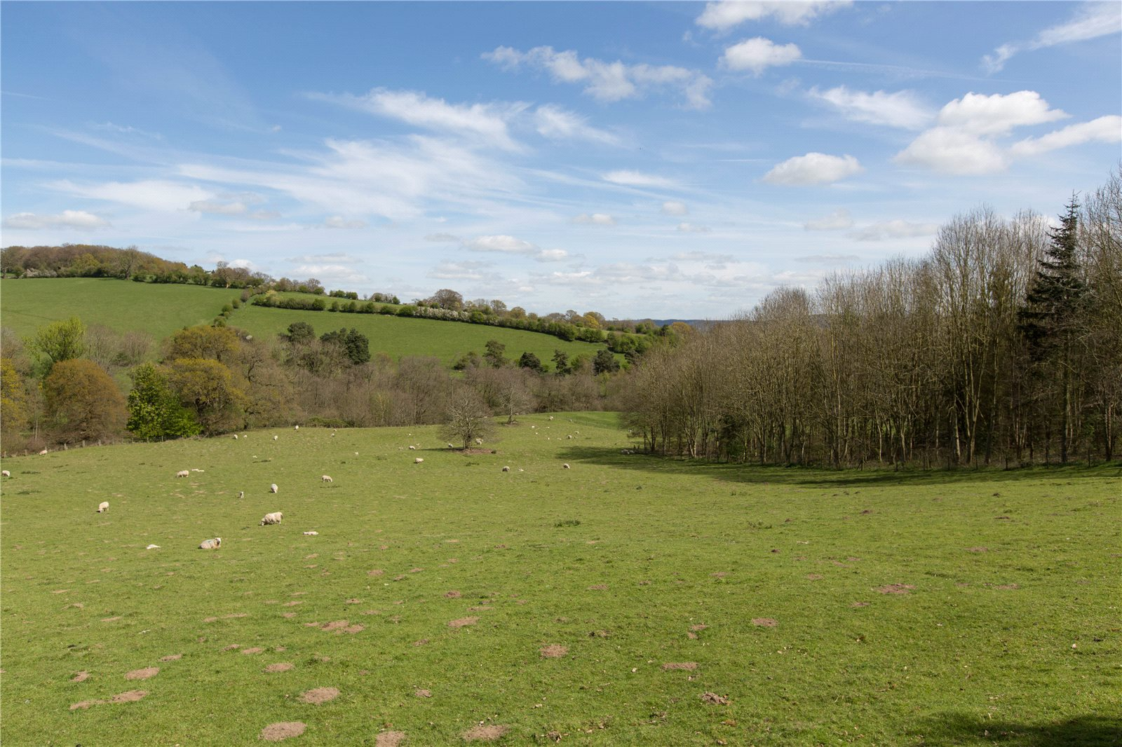 Additional photo for property listing at Plaish, Church Stretton, Shropshire, SY6 Church Stretton, Galles