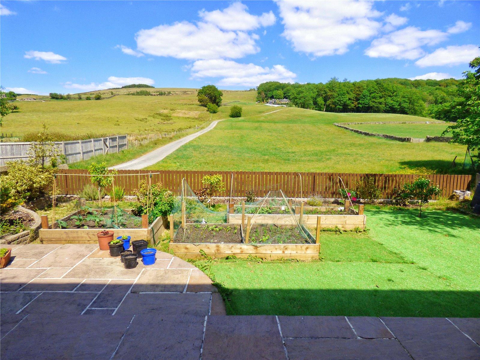 Rear Patio & Lawn: